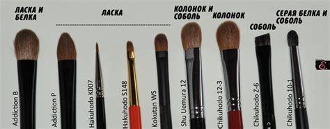 Как выбрать кисти для макияжа? 15 Потрясающих советов которые помогут вам выбрать лучший набор кистей для макияжа