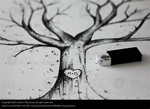 Baum Der Liebe : der baum der liebe natur ein lizenzfreies stock foto von photocase ~ Eleganceandgraceweddings.com Haus und Dekorationen