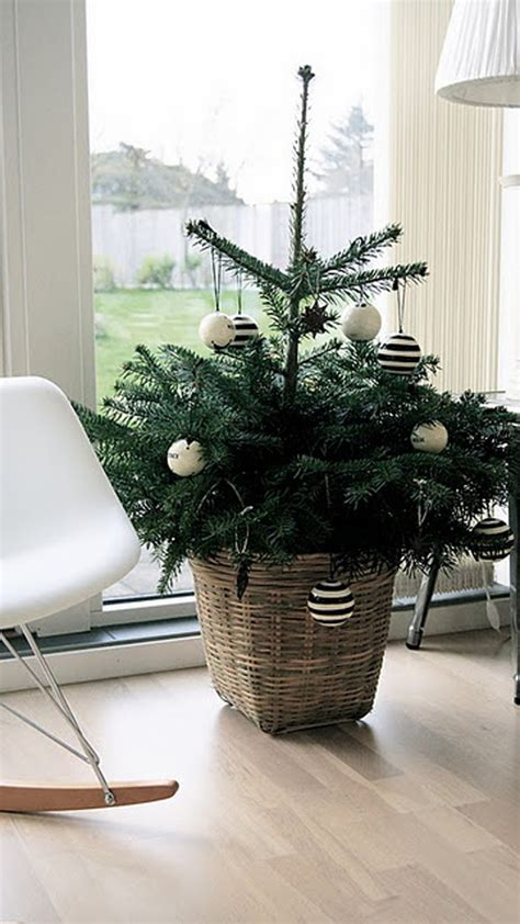 christmas tree with small space
