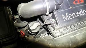 Viano V6 Motor : viano w639 3 0 cdi v6 quietscht beim motor abstellen youtube ~ Jslefanu.com Haus und Dekorationen