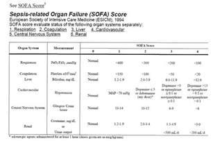 sofa score sepsis sepsis etsu internal medicine etsuim