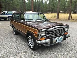 Jeep Grand Wagoneer : 1982 jeep wagoneer for sale sj usa classifieds craigslist ebay ads ~ Medecine-chirurgie-esthetiques.com Avis de Voitures