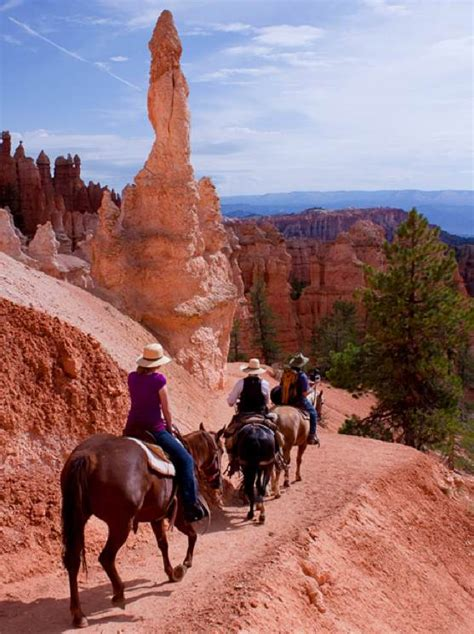 canyon bryce horseback rides riding park national grand trail zion ride tours mule horse tour donkey parks take trails utah