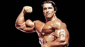 Arnold Schwarzenegger Steroid Use  The Attitude Towards
