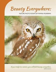 Beauty, Everywhere, Nature, Photo, Essays, By, Myrna, Pearman
