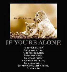 Best friends forever, through thick and thin: your pets ...