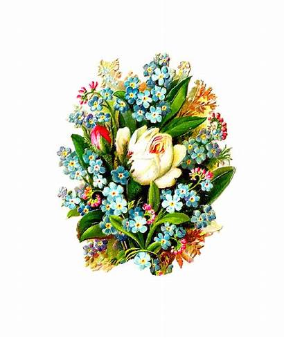 Bouquet Flower Flowers Rose Clipart Clip Forget