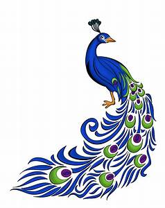 Peacock Feather Designs Png
