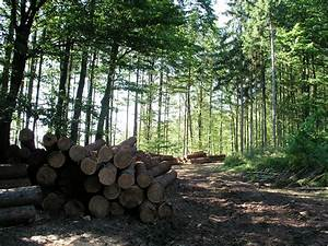 Limitations of LCAs can be addressed with FSC ...