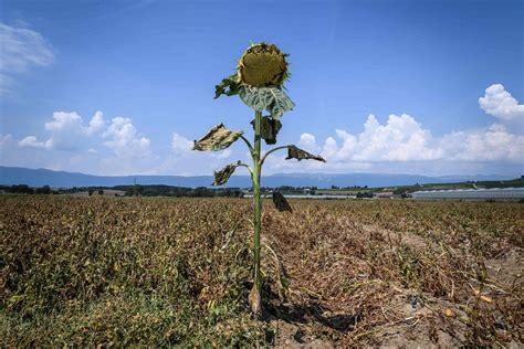 Ziņojums: Klimata pārmaiņas dramatiski samazinās ...