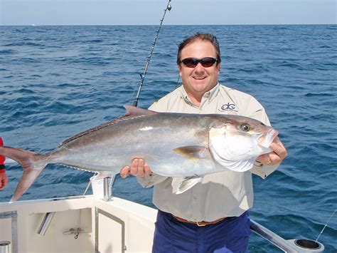 Greater Amberjack Reopens To Recreational Harvest In Gulf
