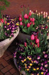 Spring Flower Garden Ideas