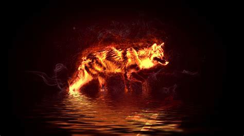 Fire Wolf By Hemamm.deviantart.com On @deviantart