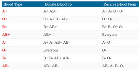 blood type chart facts  information  blood group