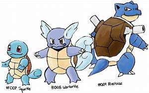 Pokemon Squirtle Evolution Images | Pokemon Images