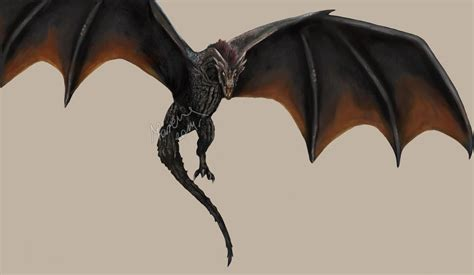Song Of Ice And Fire Wallpaper Game Of Thrones Drogon By Acinoyx On Deviantart