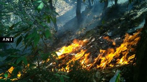 uttarakhand forest fire  burning problem