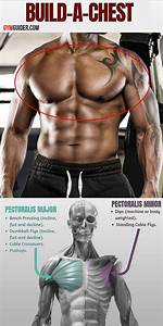 The Chest Workout For Men Who Want To Build A Bigger Stronger And Wider Chest