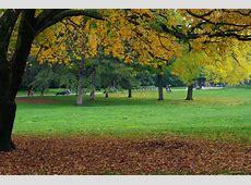 autumn parks in paris Les Studios de Paris