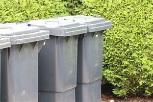 Maden Im Müll : maden in der biotonne so werden sie das problem los ~ Markanthonyermac.com Haus und Dekorationen