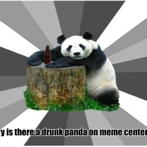 Drunk Panda Meme - meme center kaitanic profile