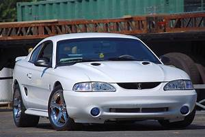 HELP!!! Need best possibly picture of a white SN95 Cobra with chrome saleens. | SVTPerformance.com