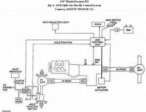 2001 Honda Pport 4wd Vacuum Diagram  Honda  Auto Wiring Diagram
