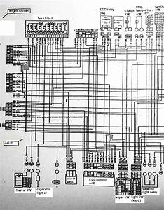 Nissan Sunny Truck Wiring Diagram  Body Left Side