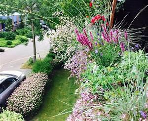 Balkonkästen Winterhart Bepflanzen : tessimo 39 s balkongeschichten juni 2015 ~ Lizthompson.info Haus und Dekorationen