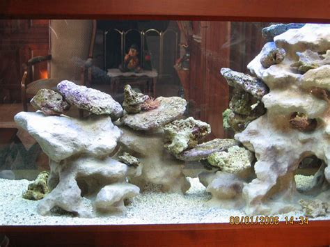 aquaplum coraux fabrication d aquariums