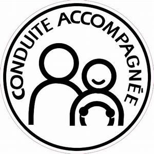 Retroviseur Conduite Accompagnée : crij normandie la conduite accompagn e ~ Melissatoandfro.com Idées de Décoration