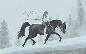 Black Arabian From Star Stable Online
