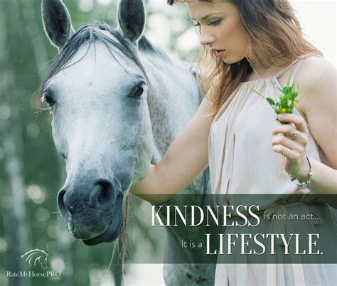 change horses horse