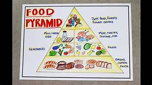 healthy food pyramid drawing for science school