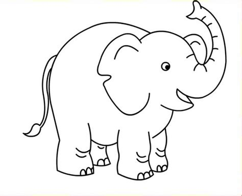 preschool elephant coloring page  kids  animal
