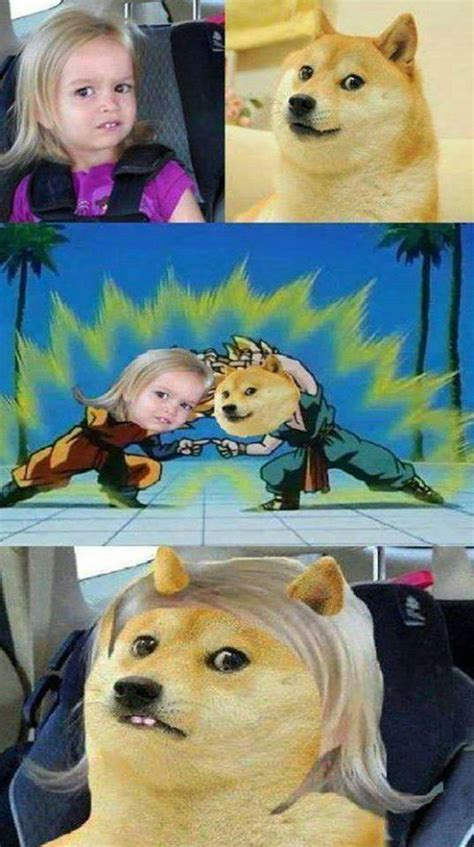 Doge Girl Meme - doge meme could you not disney girl dbz fusion