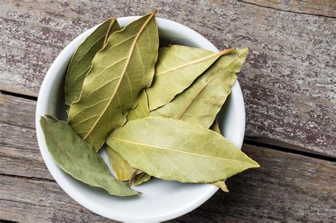 bay leaf substitute why we cook with bay leaves tasting table
