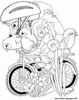 Coloring Bike Ride Brett Jan Pages Spring Adult Janbrett Hedgies Hedgie Colorier Un Printable Detailed Books Hedgehog Velo Coloriage Easter sketch template