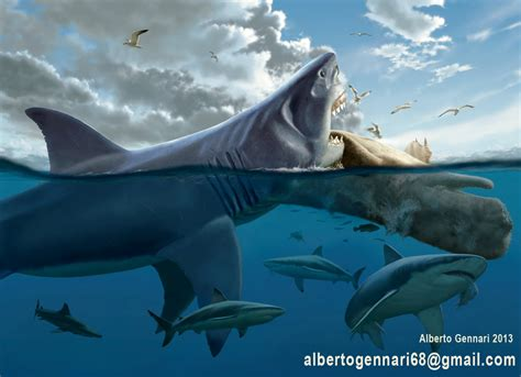 Megalodon Images Megalodon History S Mightiest Scavenger Kronos