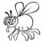 Fly Coloring Pages Drawing Insect Animals Shoo Cartoon Sheet Swatter Printable Bother Animal Sheets Clipart Don Eyes Preschool Swat Dont sketch template
