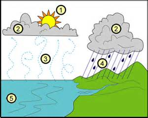 6th Grade Water Cycle