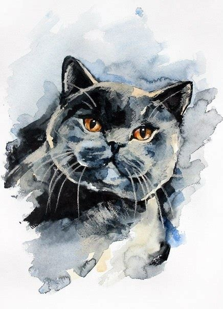 water painting cat art photography watercolor art