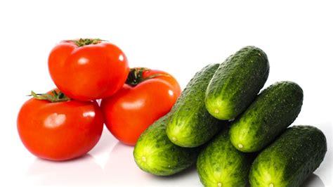 gurken und tomaten im gewächshaus gurken und tomaten im gew 228 chshaus nicht nebeneinander setzen wohnen derwesten de