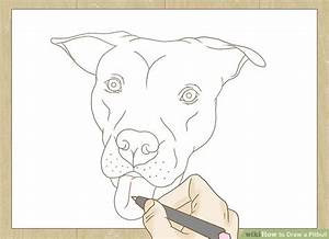 How to Draw a Pitbull (with Pictures) - wikiHow