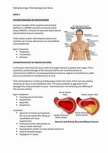 Pathophysiology - Nur231 - Cdu