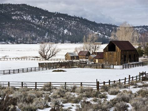 sierra valley ranch  winter stock photo image