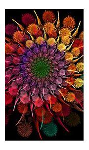Fractal HD Wallpaper | Background Image | 1920x1080 | ID ...