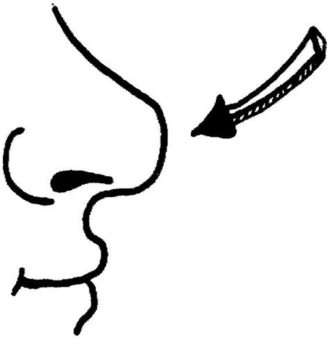 coloring page nose coloringme