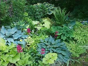 Pflanzen Für Nordseite : garten nordseite gestalten wohn design ~ Frokenaadalensverden.com Haus und Dekorationen
