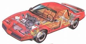 1982 Firebird